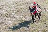 Doubletree Farm Derby 11-10-19-5791