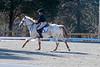 Doubleytree Farm Derby 11-10-19-0696