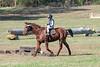 Doubletree Farm Derby 11-10-19-5829