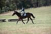 Doubletree Farm Derby 11-10-19-5845