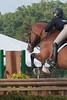 DRHC Horse Show USEF Premier 6-20-15-6241