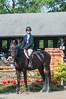 DRHC Horse Show USEF Premier 6-20-15-6327