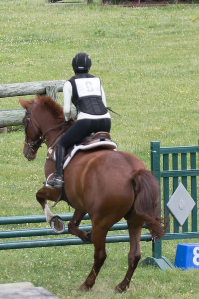 DRHC Jumper Derby 5-21-2017-574
