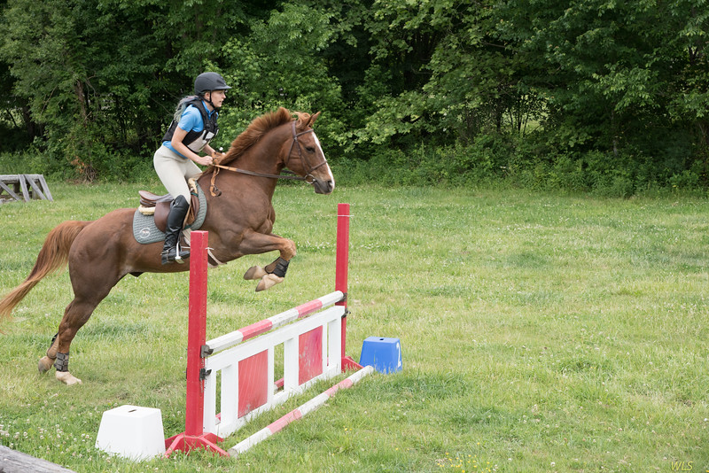 DRHC Jumper Derby 5-21-2017-2530
