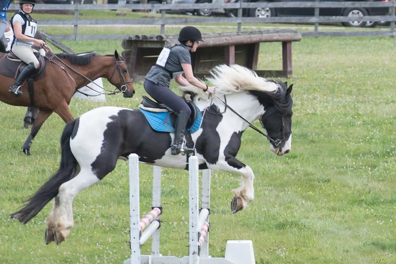 DRHC Jumper Derby 5-21-2017-459