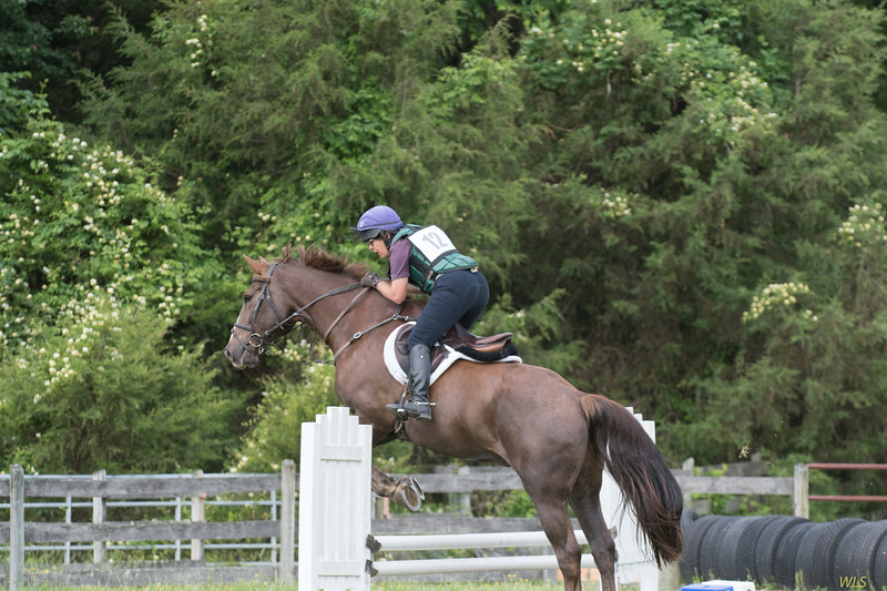 DRHC Jumper Derby 5-21-2017-504