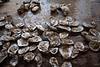 DRHC Oyster Roast 2016-3948
