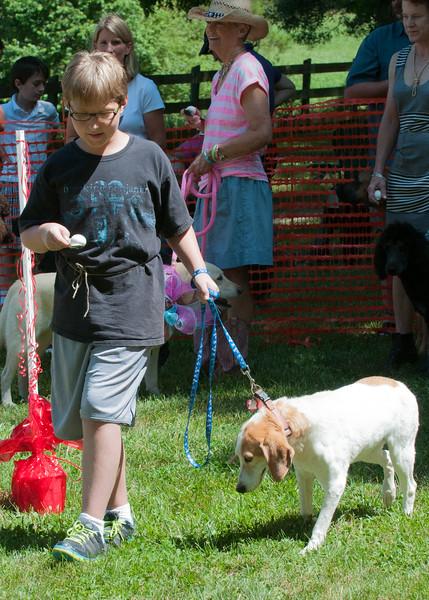 DRHC Dog Show 2012-5292