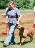 DRHC Dog Show 2012-5312