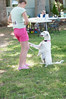 DRHC Dog Show 2012-5243