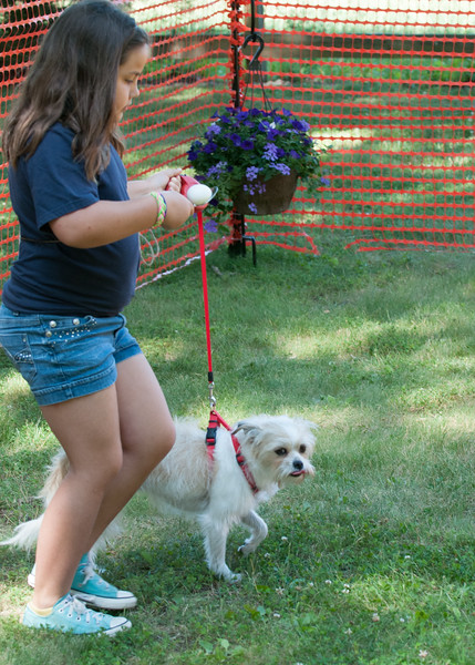 DRHC Dog Show 2012-5282