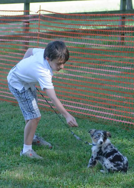 DRHC Dog Show 2012-5123
