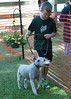 DRHC Dog Show 2012-5188