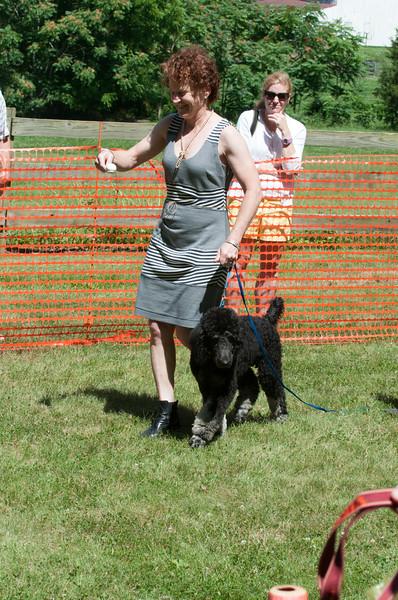 DRHC Dog Show 2012-5307