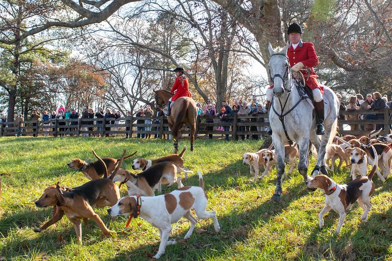 DRHC Thanksgiving  Hunt  2019-7109