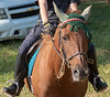 DRHC TRAIL RIDE cook-DeLaney  Hagans 8-26-2018-158