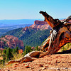 A view from the rim of Sunset Point of Bryce Canyon National Park, Utah.