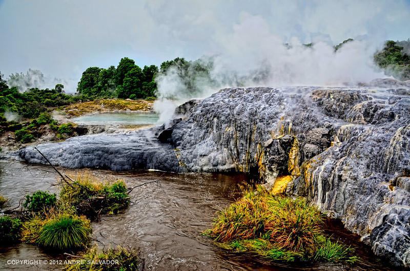 A view of Pohutu Geyser at Rotorua Hot Springs, New Zealand.