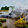 A view of Pohutu Geyser at Rotorua Hot Springs, New Zealand.