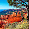 Taken from the rim walk of Sunset Point at Bryce Canyon National Park, Utah.