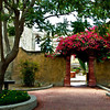 The cloistered garden of Mission San juan Capistrano in California, USA.