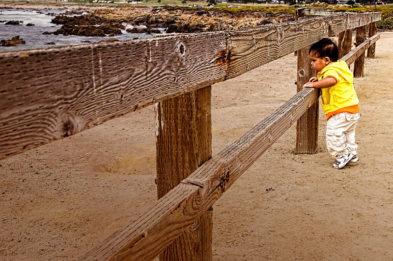 I spotted this very young tourist leaning on the fence enjoying the coastline in Pebble Beach, Monterey, California, USA.
