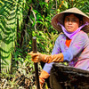 """""""Woman Paddler"""" - The boat paddlers at Phoenix Island by the Mekong Delta are women. It is a hard job. This woman looks tired and her blouse is all wet with sweat. Spotted at Phoenix Island, Mekong Delta, Vietnam."""