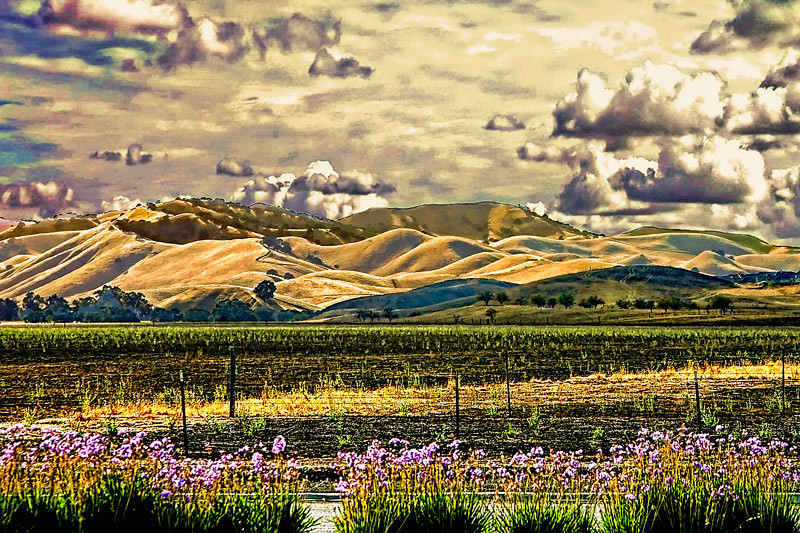 A view of Mount Diablo across still undeveloped areas of Antioch, California, USA.