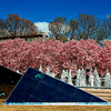 View of the east garden of the National Art Gallery, East Wing at the Capitol, Washington, DC. Photo was taken in the spring of 2004.