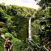 Akaka Falls State Park, Hilo, Big Island of Hawaii, Hawaii Island group.