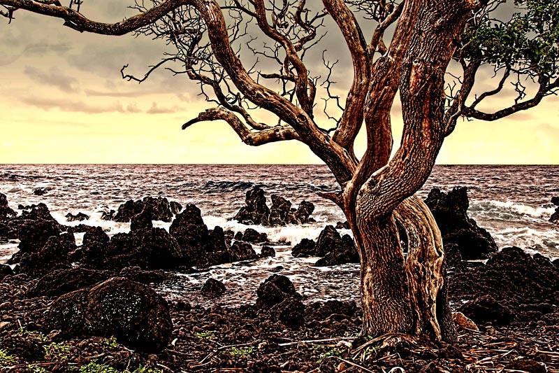 Ahini-Kinau, an undeveloped part of the Island of Maui, Hawaii Island group, USA.