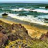 The Pacific Coast at Julia Peiffer Burns State park in California, USA.