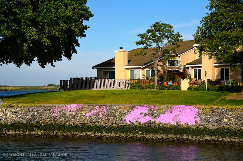 A view of delta facing homes early spring in Pittsburg, California.