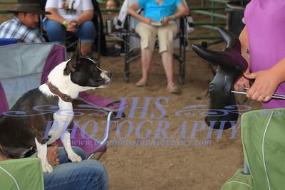 Rranch Horse Events- Monday