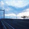 CABLE BRIDGE 1