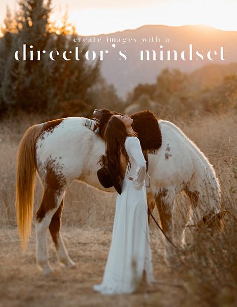 1 DAG Cover Page Director's Mindset 2021