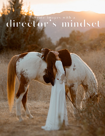 1 DAG Cover Page Director's Mindset 2021