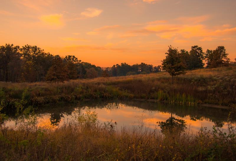 Autumn Lake 35