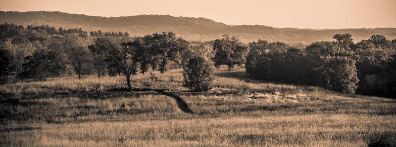 Autumn Field 17
