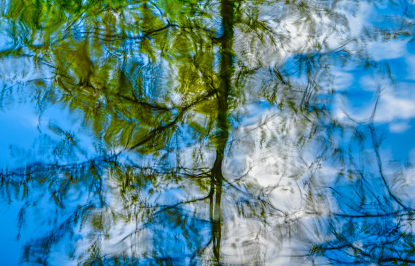 ABSTRACT WATER  23