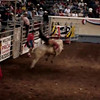 Oklahoma City rodeo - Bad Bull