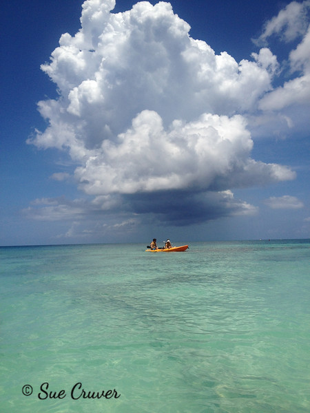 Tropical Cloud 3