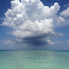 Tropical Sky