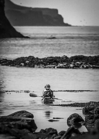 Wildlife Safari Sea Kayak
