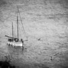 Sights by Sail