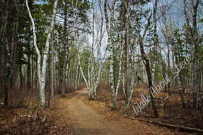 Bemidji Trail
