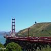 Golden Gate Bridge  and Lone Tree