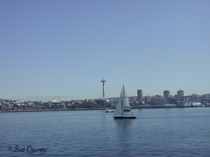 Needle and Sailboat