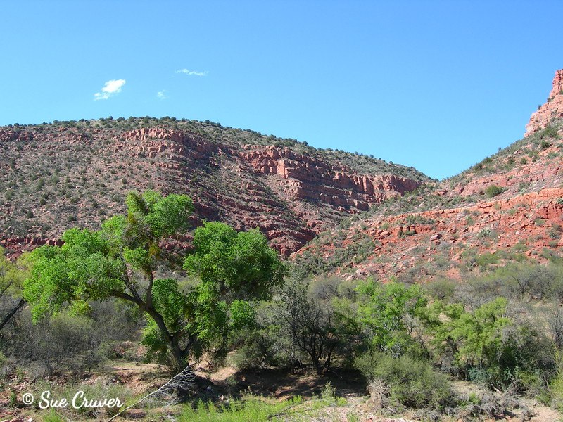 Verde Canyon 8