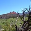 Sedona Landscape 3